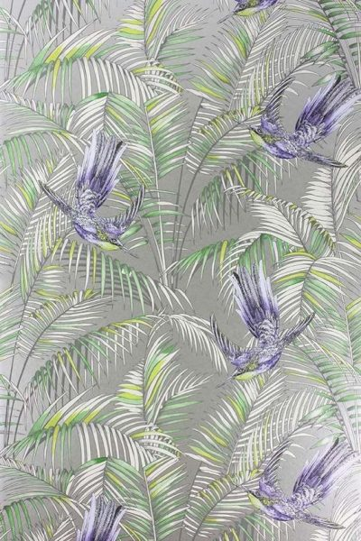 Osborne & Little Sunbird Wallpaper
