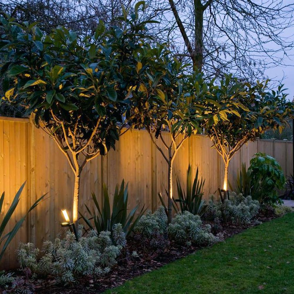 Outdoor lighting - Spiked solar lights near trees
