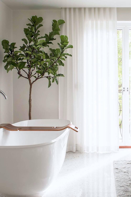 Bathroom renovation tips by First Sense || Dreamy spa-like bathroom